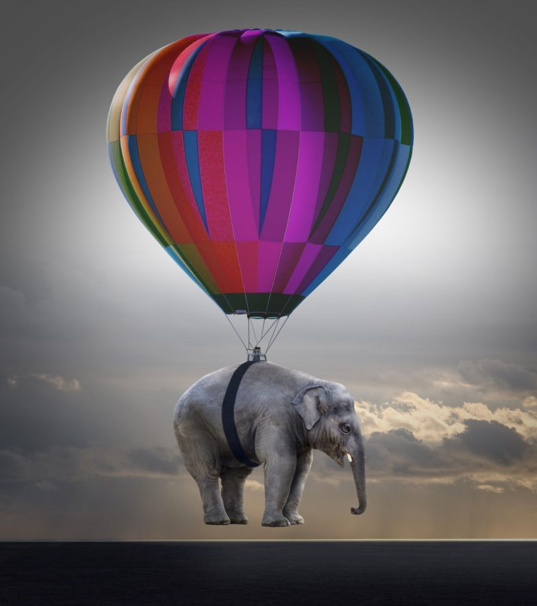 elephant being raised by an air balloon